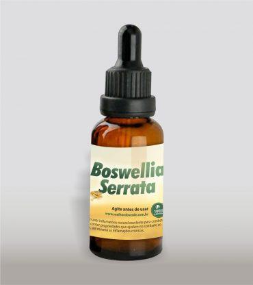 Boswellia Serrata –...